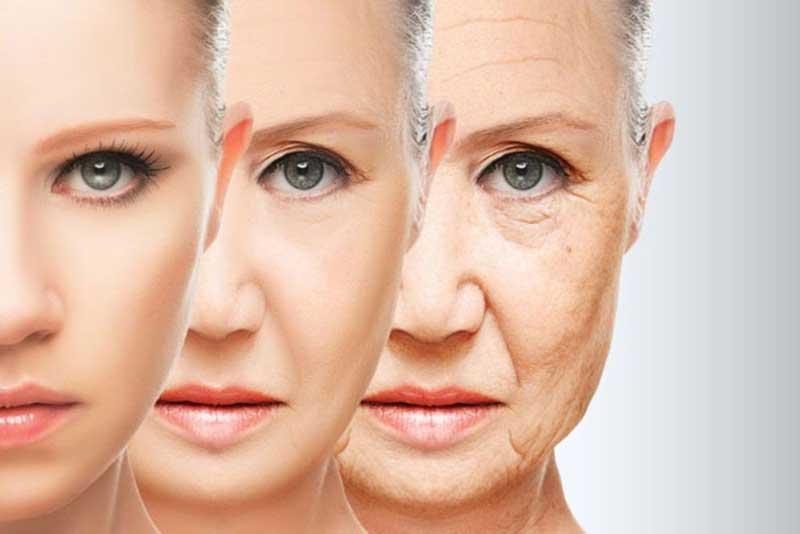 борба против стареење