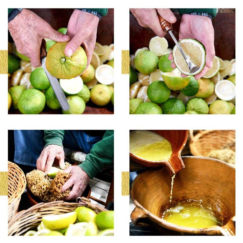 acqua di parma bergamotto di calabria how is it made